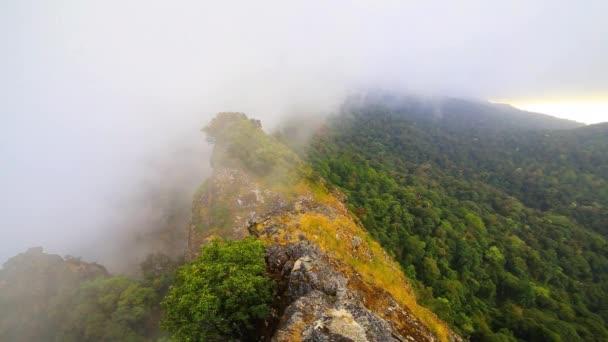 Reggeli köd a trópusi esőerdők, Misty mountain erdő köd