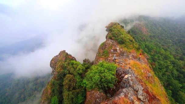 Morning fog in tropical rainforest, Misty mountain forest fog