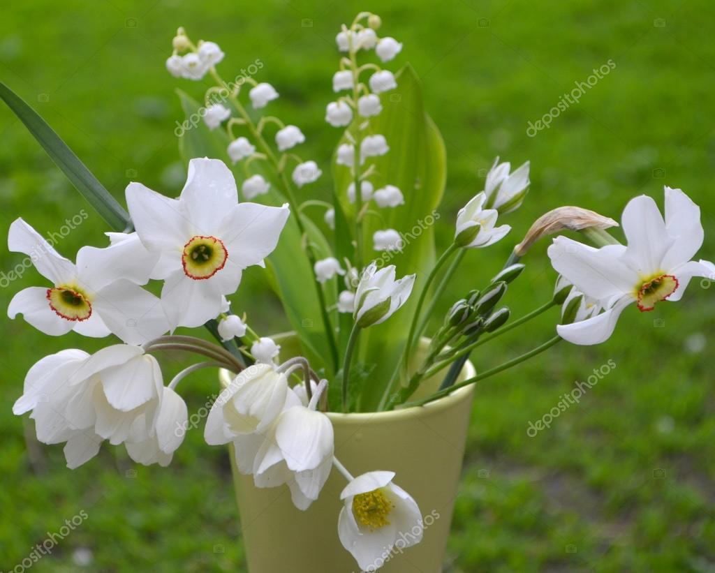 Bouquet de fleurs blanches sauvages photographie yuliyam 72703561 - Bouquet de fleurs sauvages ...