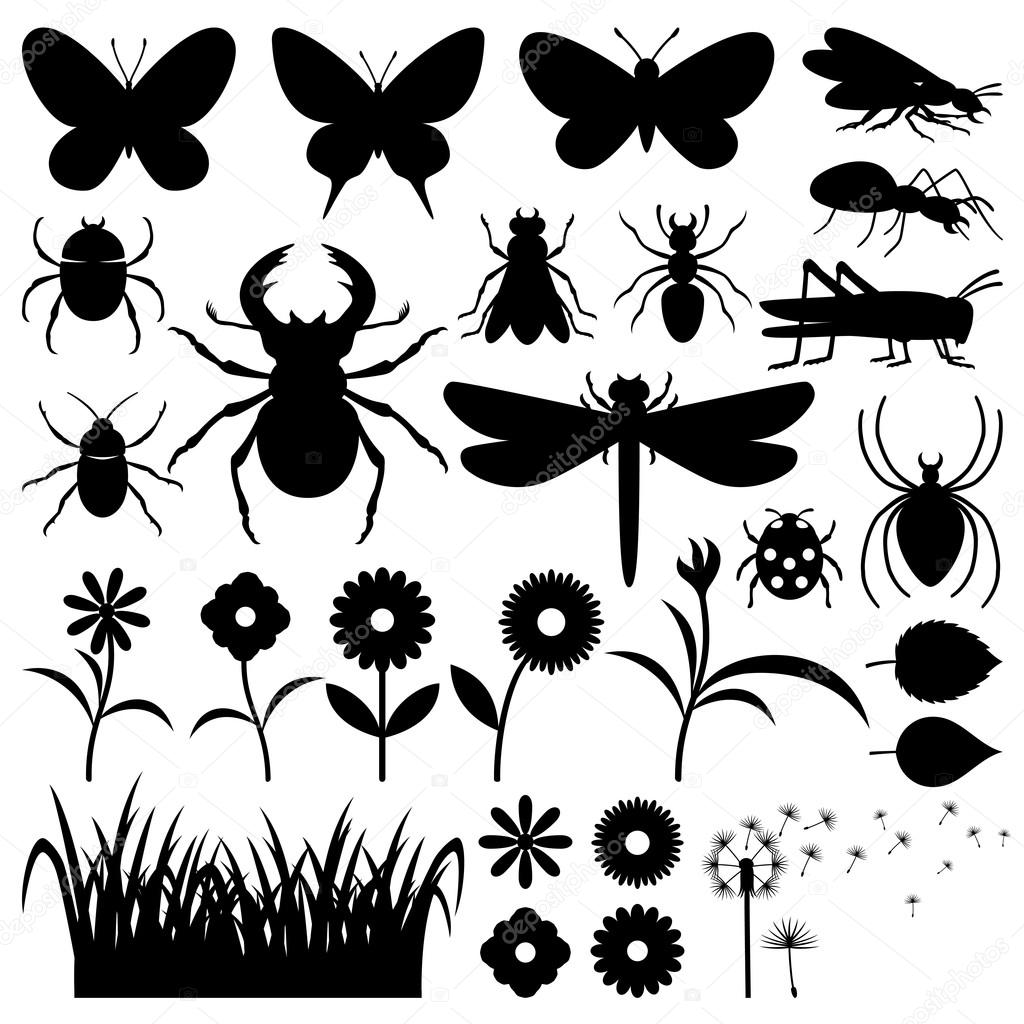 Silhouettes of insects and flowers.
