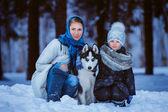 zimní Procházka s husky