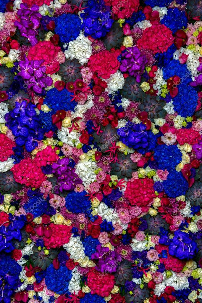 Prato di fiori colorati — Foto Stock © intendo48 #53944339