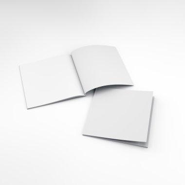 blank catalogs or brochures