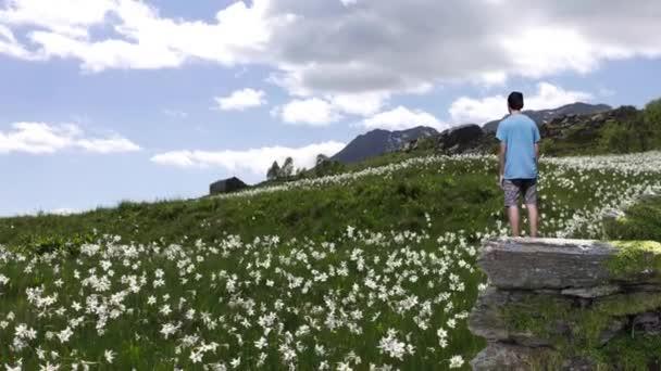 Parallaxe Landschaft eines Jungen, der auf einem Bergsporn steht und auf eine Bergwiese mit Edelweiß blickt. Kinotag