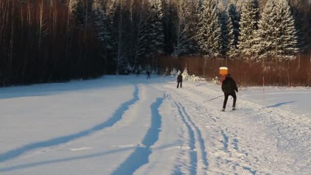 Zurück von vier Nichtskifahrern, die am Wintertag in der Nähe des Waldes auf der Piste unterwegs waren