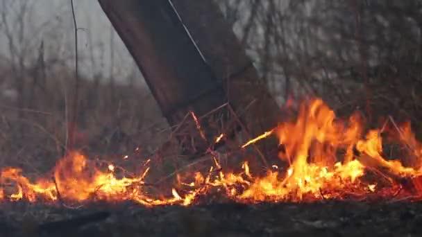 oheň a kouř