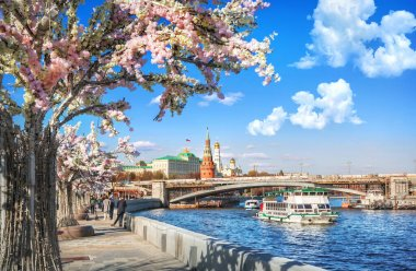 Flower trees on the embankment of the Moskva River, the Kremlin and ships on the river in Moscow on a summer sunny da