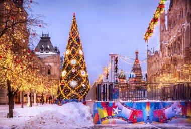 The main Christmas tree
