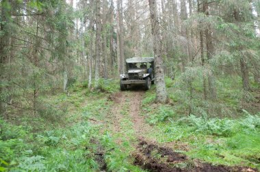 American military retro car Dodge WC-51 rides in the forest on the hard road, 3rd international meeting