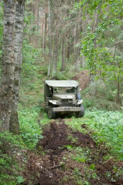 American old car Dodge WC-51 goes through heavy forest road, 3rd international meeting