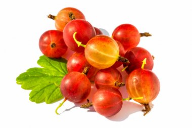 Ripe red  gooseberry with leaf isolated on white background