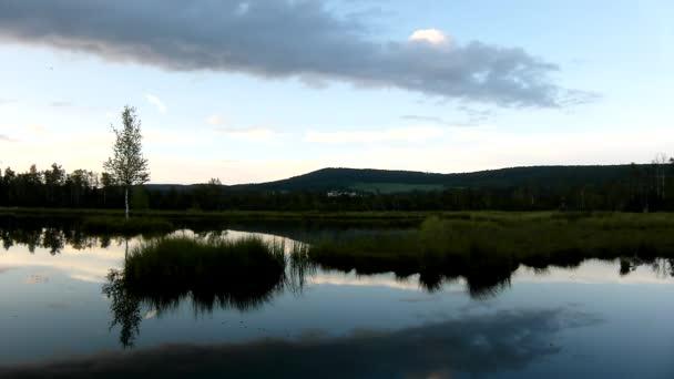 zasněný svítání podzimní jezero s zrcadlení vodní hladiny v Tajemný les, mladý strom na ostrově uprostřed. čerstvá zelená barva bylin a trávy, modré růžové obláčky v nebi