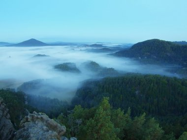 Rocky hill above death forest and misty valley. The fog is moving between hills and peaks of trees, blue sky.