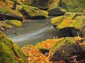 colori dautunnali presso le rive del fiume di montagna. massi coperti di muschio verde freschi sulle rive del fiume coperte con colori vivaci
