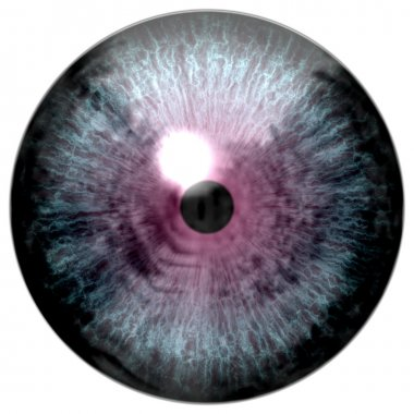 Animal eye with purple colored iris, detail view into eye bulb. Alien strange eye