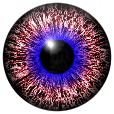 Animal eye with contrast colored iris, detail view into eye stock vector