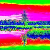 Hegyi tó a kis sziget mocsár közepén. Ég a tükör a víz szintje, furcsa színek Termográfiás fotó. Sziklák és fák árnyékában lévő víz szintje