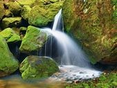 Ricchi in cascata il piccolo ruscello di montagna, acqua è in esecuzione su massi coperti di muschio di basalto