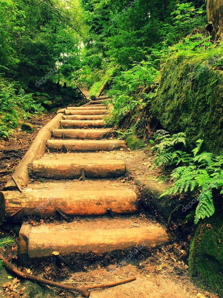 Escaleras para jardin te enseamos a construir un magnfico jardn en escalera para tu casa - Escaleras jardin ...
