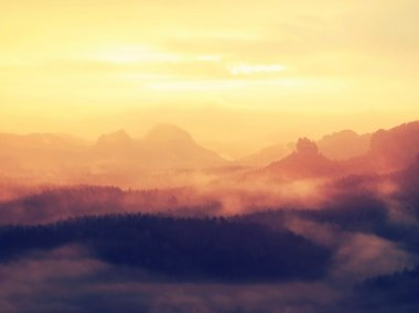 Sunrise in a beautiful mountain of Czech-Saxony Switzerland. Hilly peaks increased from orange fog with sun rays.