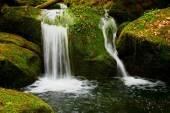 Cascata sul piccolo ruscello di montagna. Acqua di cristallo freddo sta cadendo su massi coperti di muschio di basalto in piccola piscina