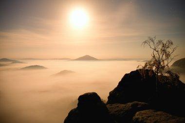 Island with tree in misty ocean. Full moon night in  beautiful mountain. Sandstone peaks  increased from heavy creamy fog.