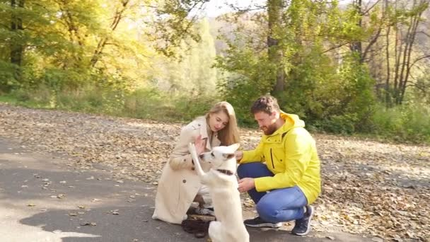 young couple gives commands to a dog while walking with it in the Park on a Sunny autumn day