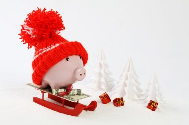 Piggy box with red hat with pompom standing on red sled with blanket from greenback hundred dollars on snow and around are snowbound trees and three gifts with gold bow