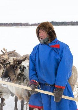 Nenets with deers