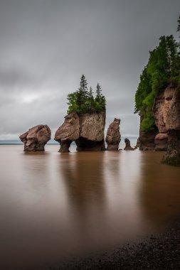 The Hopewell Rocks