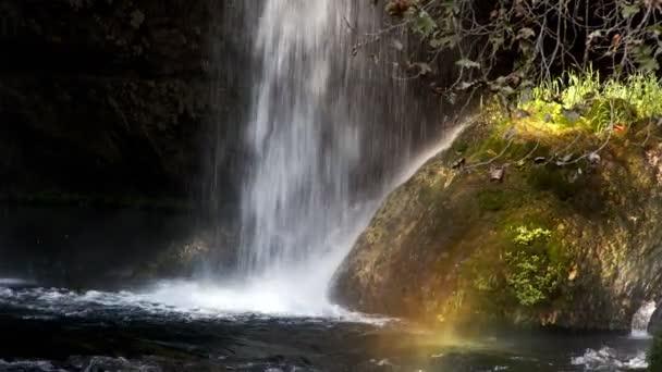 Vodopád v divoké přírodě