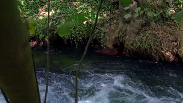 Waterfall in Wild Nature