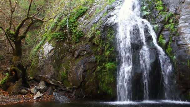 vodopád a příroda