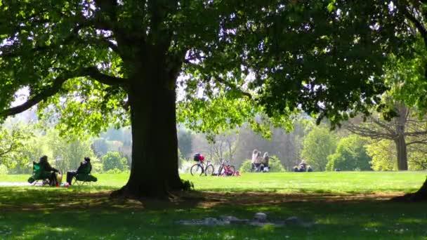 Jeden den v parku v přírodě