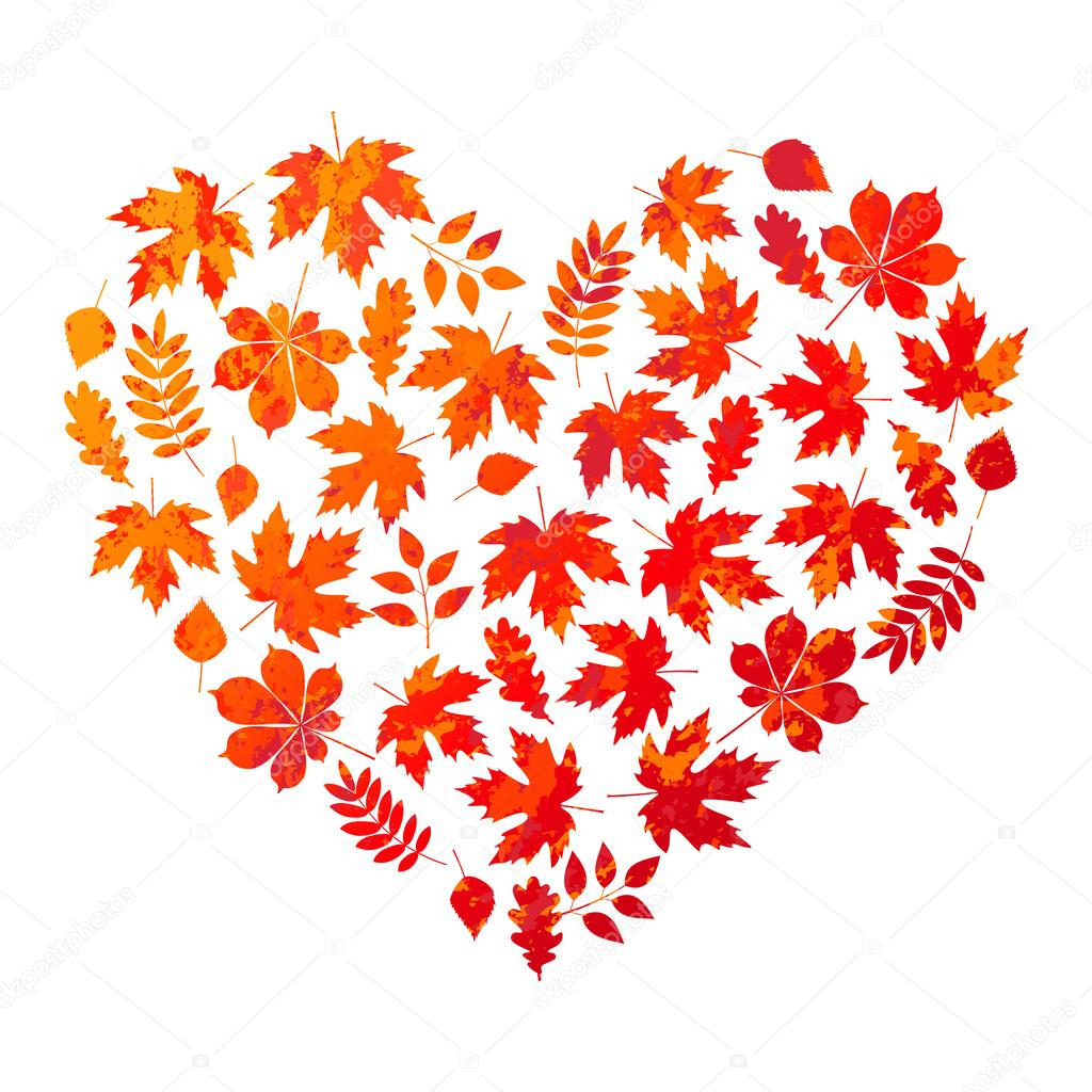 vector heart made of autumn leaves on white background in grunge style