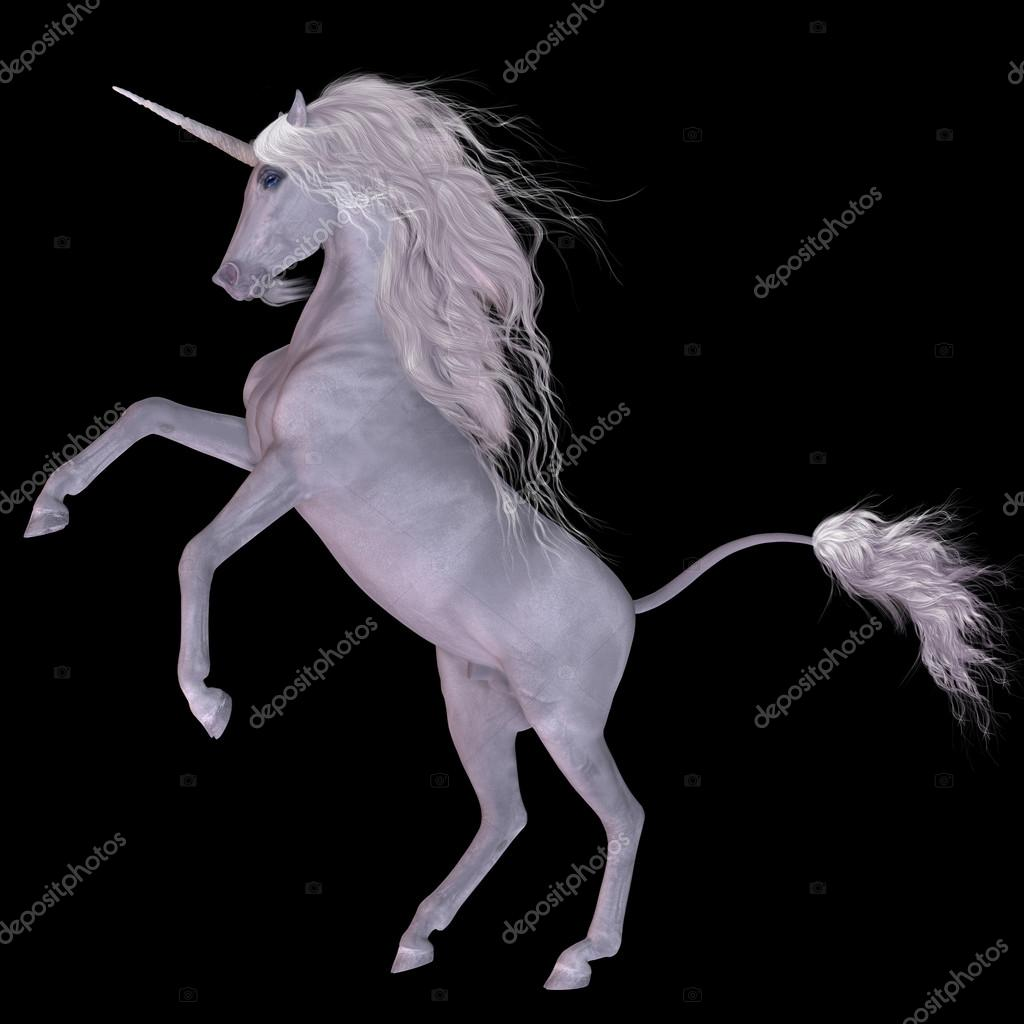 Unicorn on Black