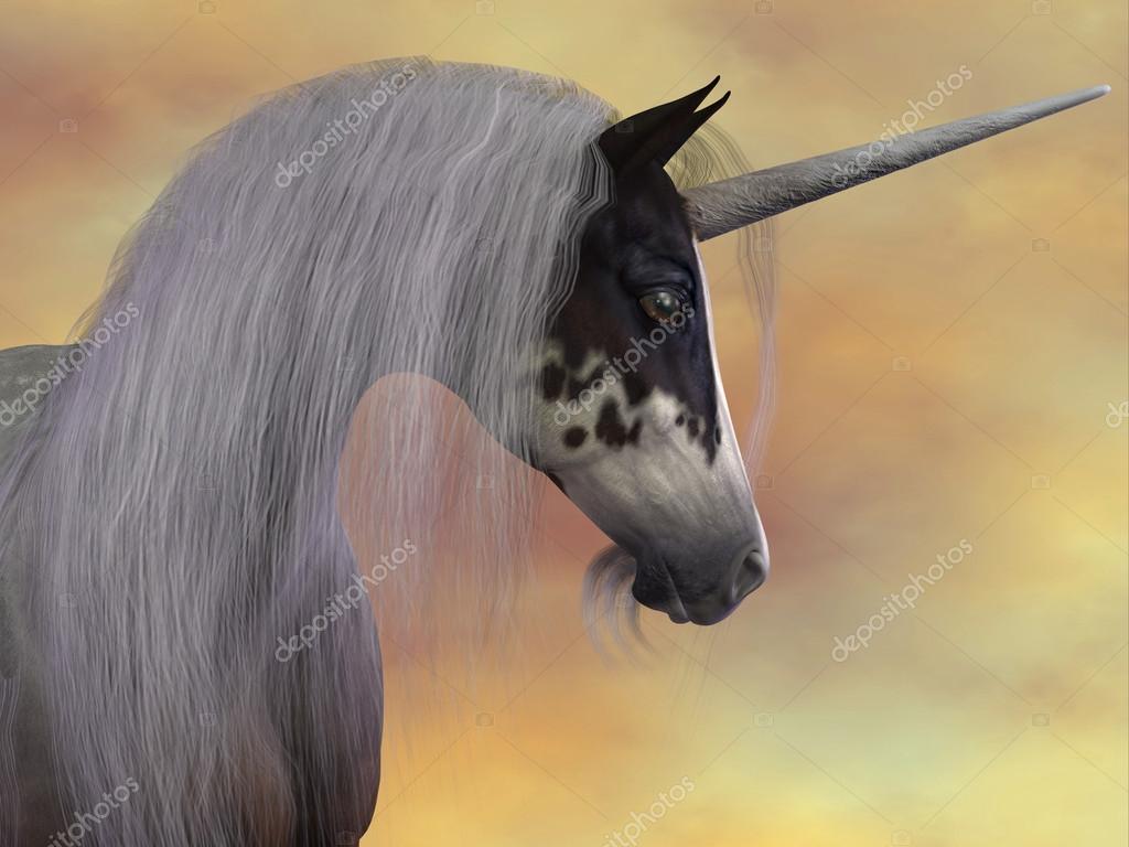 Unicorn Beauty