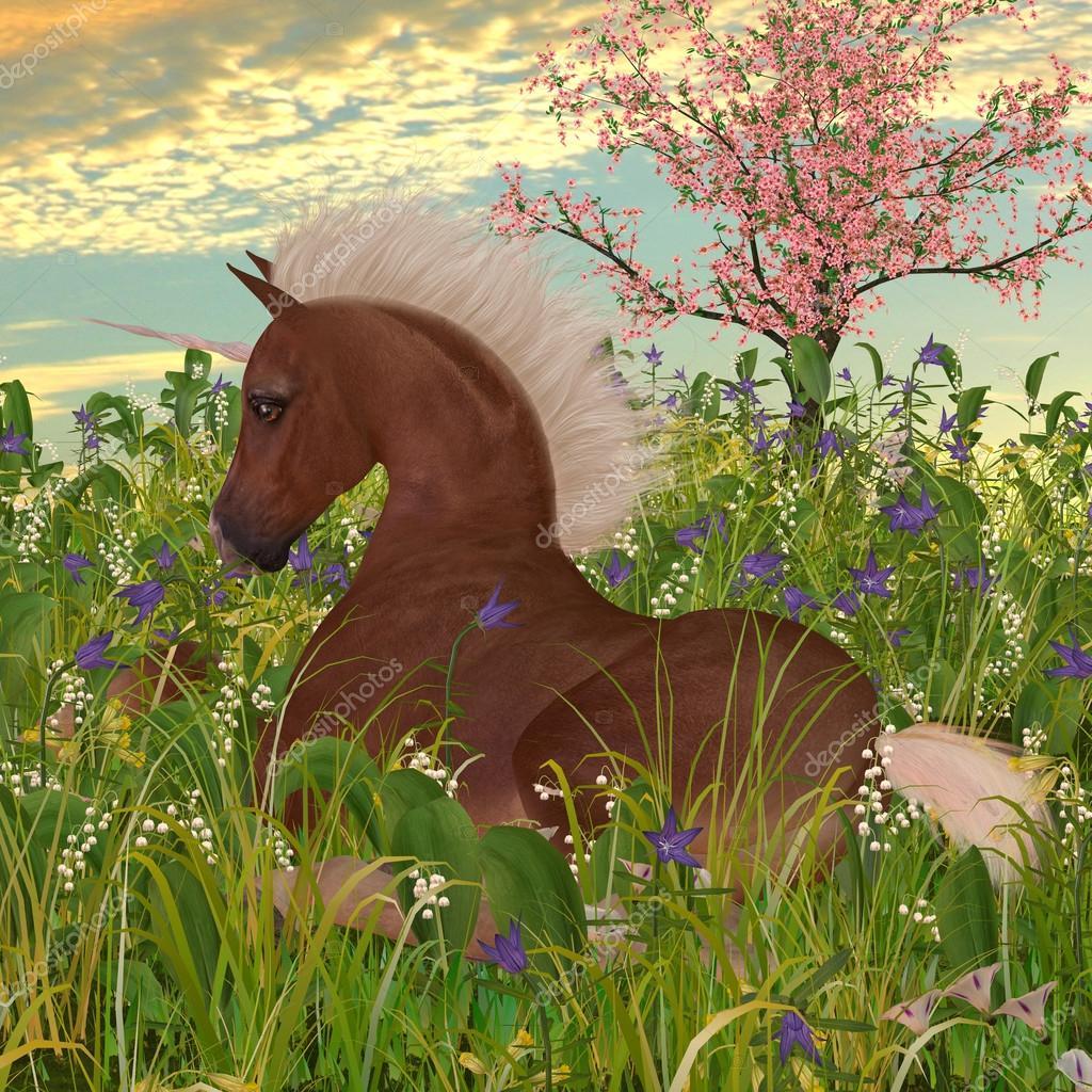 Belgian Unicorn Foal