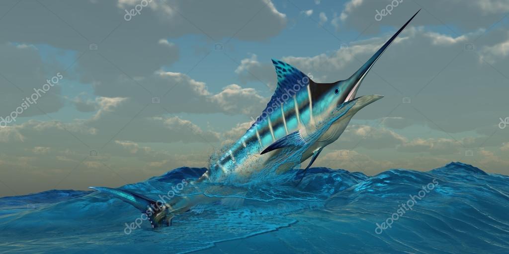 Blue Marlin Burst
