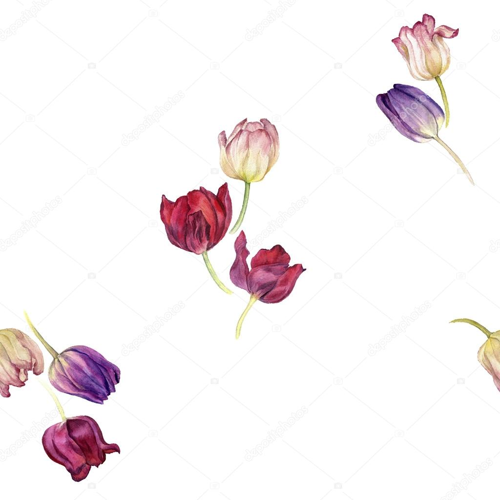 seamless pattern with watercolor tulip