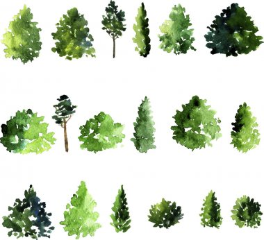Set of trees drawing by watercolor, conifer and decidious trees, green foliage, hand drawn vector illustration stock vector