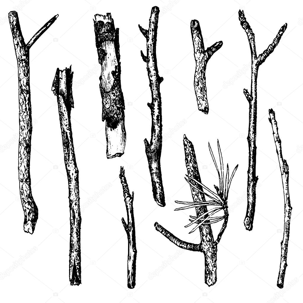 ink drawing wood twigs — Stock Vector © cat_arch_angel ...