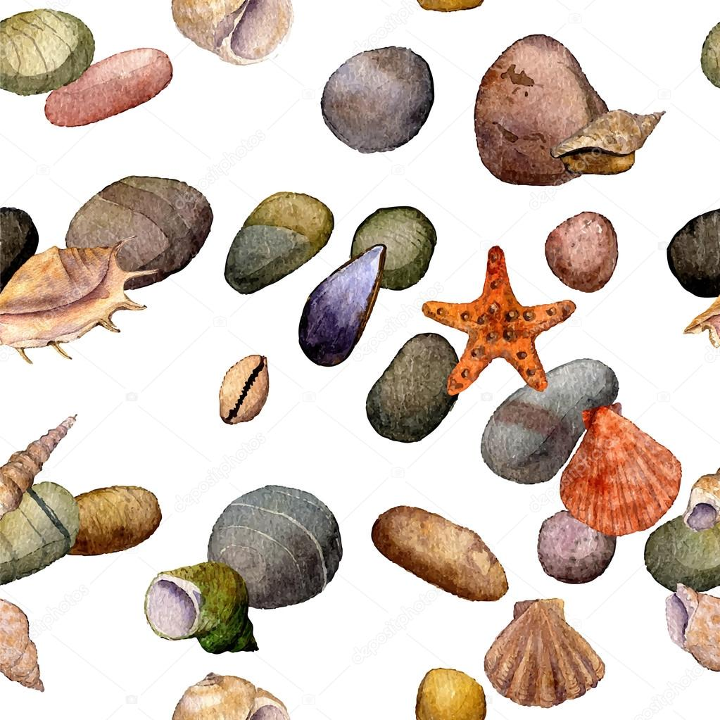 vector seamless pattern with watercolor drawing shells