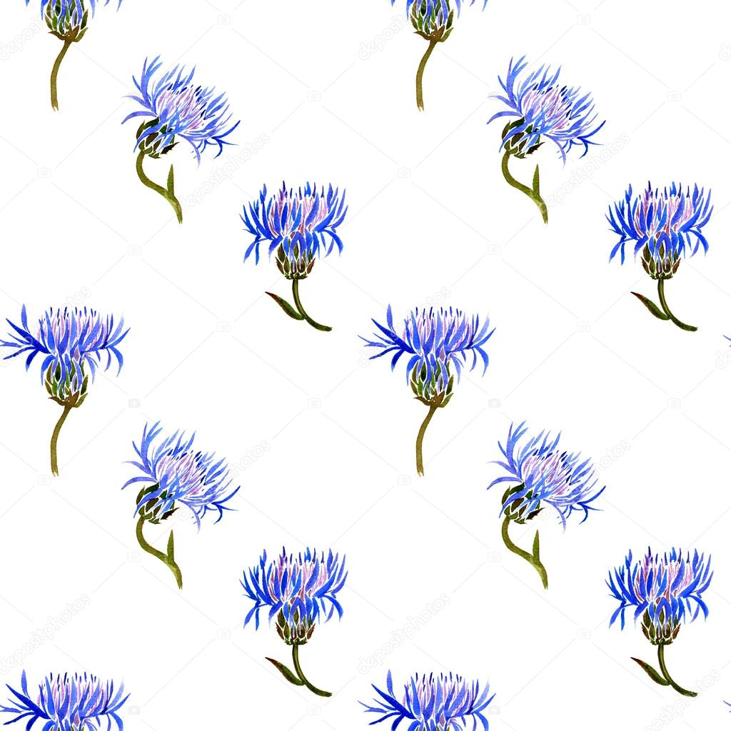 Seamless pattern with watercolor drawing cornflowers