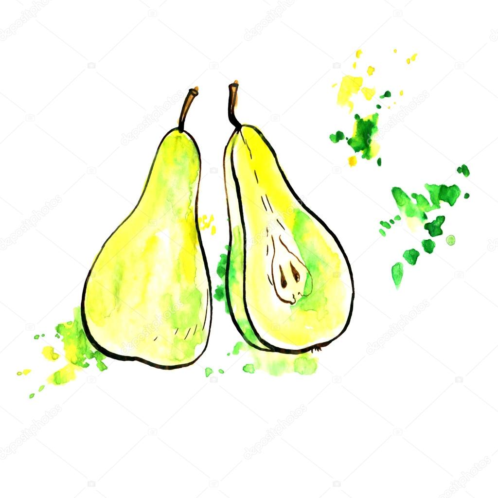 Hand Drawn Pears Stock Photo C Cat Arch Angel 120198616