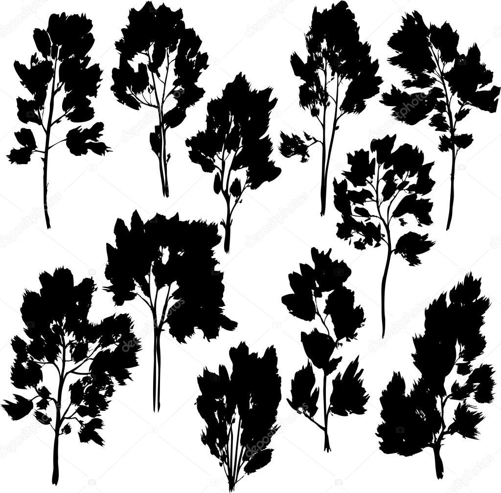 Satz von verschiedene Bäume mit Blättern — Stockvektor ...