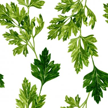seamless pattern with leaves of parsley