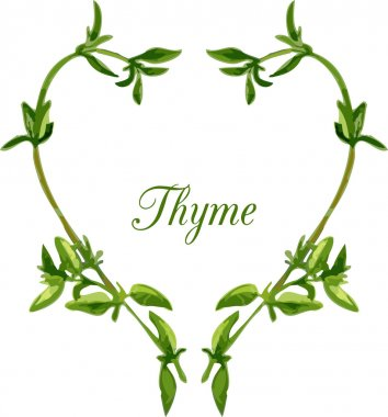 heart by sprigs of thyme