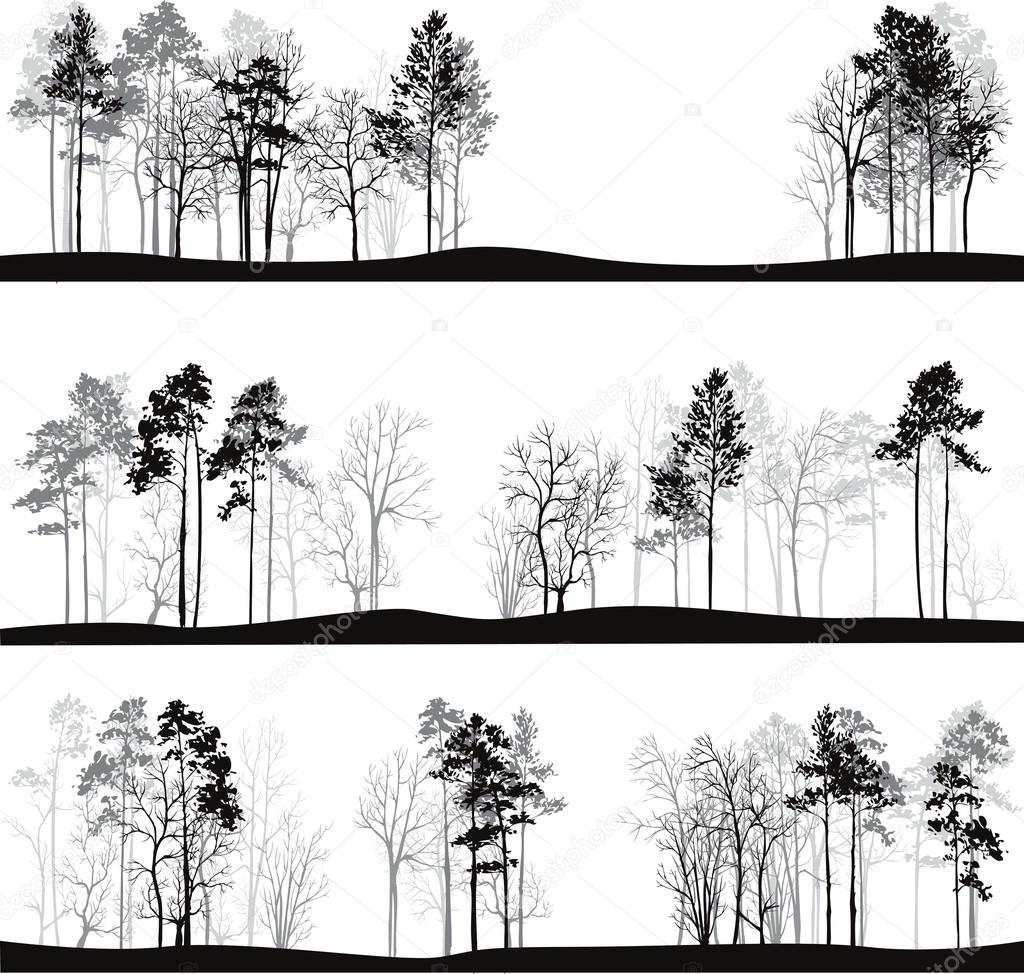 set of different landscapes with pine trees