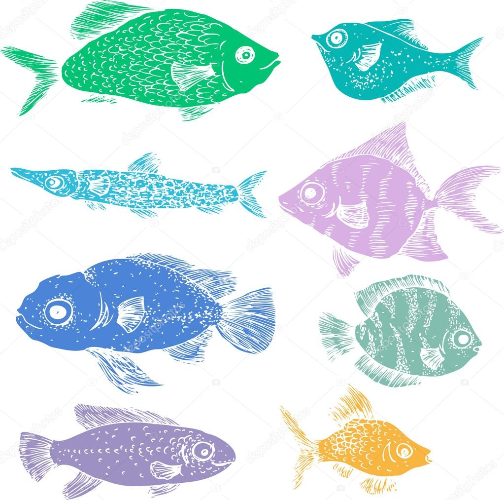 colored silhouettes of fishes